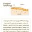 Koensüüm Q10-ga näonahka kaitsvad seerumipärlid